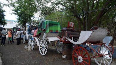 Photo of Los tradicionales coches de Santiago están en extinción
