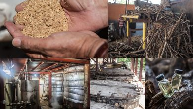 Photo of El contrabando que sustenta industria en Haití