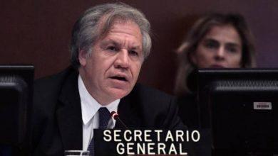 Photo of Almagro dice que futuro de Nicaragua debe decidirlo el pueblo y no una elite