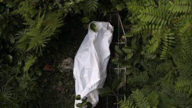 Photo of Encuentran cadáver de un hombre en el río Yuna