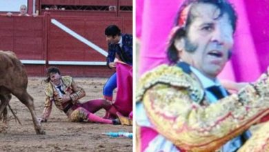 Photo of Vídeo: Toro arranca cuero cabelludo a torero