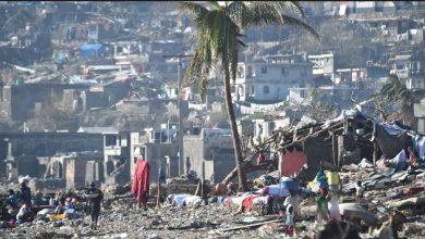 Photo of FAO pide 20 millones de dólares para ayudar a Haití