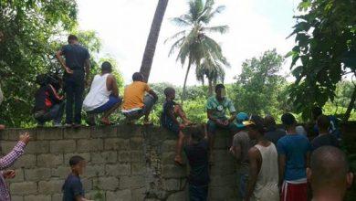 Photo of Pánico en Haina por aparición de serpiente de gran tamaño