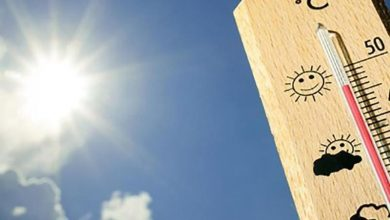 Photo of Conoce dónde se han dado las temperaturas más calurosas y más frías del país