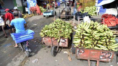 Photo of Vendedores de plátanos en Santiago rechazan planes de desalojarlos