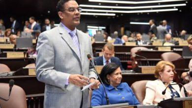 Photo of Diputados aprueban préstamo por 150 millones de dólares para proyectos agroforestales