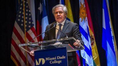 Photo of Almagro «no reconoce» las «instituciones» creadas por Constitución en Cuba