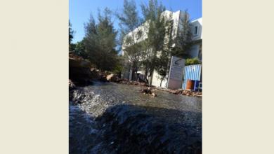 Photo of Se desperdicia el agua en la Plaza de la Cultura en medio de acentuada sequía.