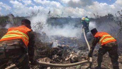 Photo of Sospechan fue intencional el incendio forestal en área protegida de Laguna Bávaro