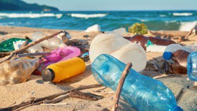 Photo of Ibiza y Formentera luchan contra el plástico.