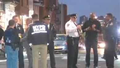 Photo of Tiroteos en feriado de Acción de Gracias dejan 10 heridos en El Bronx.