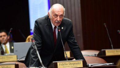 Photo of Fidelio Despradel pide interpelar al ministro de Medio Ambiente por construcción de hotel en Parque Cotubanamá.