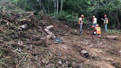 Photo of Danilo Medina ordena suspender construcción en Parque Nacional del Este.