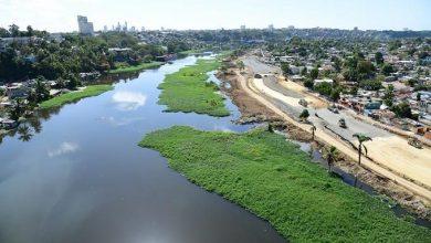 Photo of Las lilas arropan nuevamente los ríos Ozama e Isabela.