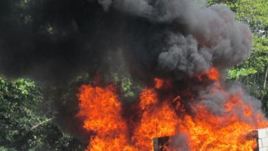 Photo of JCE incinera más de tres millones de boletas de las suspendidas elecciones.