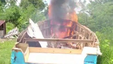 Photo of Detectan e incineran yola en la provincia Duarte.