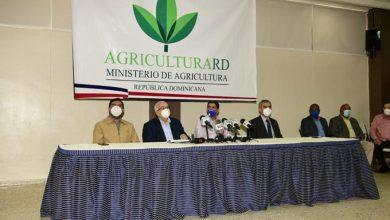 Photo of El 60% de préstamos de RD$5,000 millones a sector agropecuario será a productores con hasta 200 tareas.