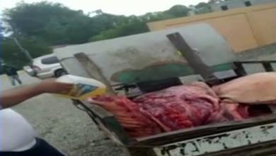 Photo of Salud Pública incauta 1,500 libras de carne de cerdo no apta para consumo en Las Matas de Farfán.
