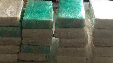 Photo of Llega a Puerto Rico contenedor refrigerado con 61 kilos de cocaína proveniente de República Dominicana.