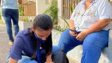 Photo of Solicitarán coerción contra el hombre que agredió a su perrita